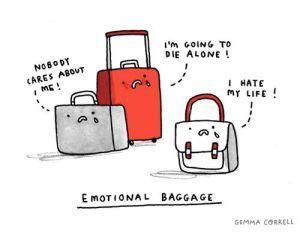 Gemma Correll-bagage