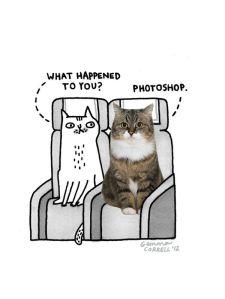 Gemma Correll-photoshop