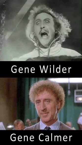 pun meme gene wilder